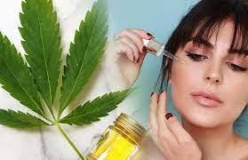 Thumbnail for A leading Legal Cannabis Shop (Cannabis Legale Shop) in the European market